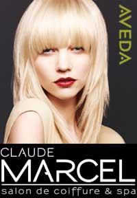 Claude marcel salon de coiffure spa alexandria va for Local a louer pour salon de coiffure