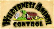 Wilderness Animal Control LLC