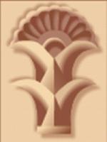 Dr. Anoosh Afifi M.S. D.D.S. - Seattle, WA