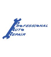 Professional Auto Repair