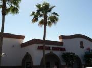 Mesa Northeast Animal Hospital