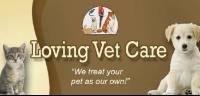 Sun Surf Veterinary Hospital in Huntington Beach, CA, photo #4