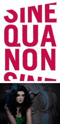 Sine Qua Non Salon - Andersonville - Chicago, IL