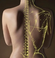 Symtrio Chiropractic Clinic