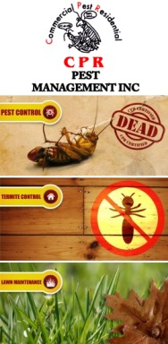 Cpr Pest Management